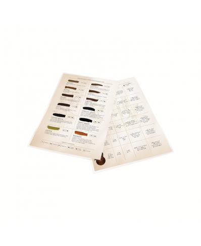 Skin Monarch Expression line pigment laminated palette 1 pcs.