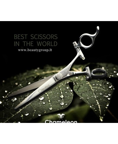 Chameleon scissors (Italy)